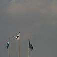 国立にはためくフロンタ旗